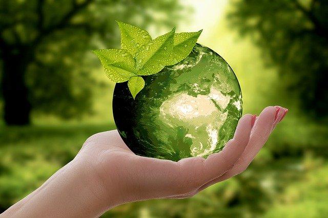Responsable du développement durable : Pour quoi ? Et pour qui ?