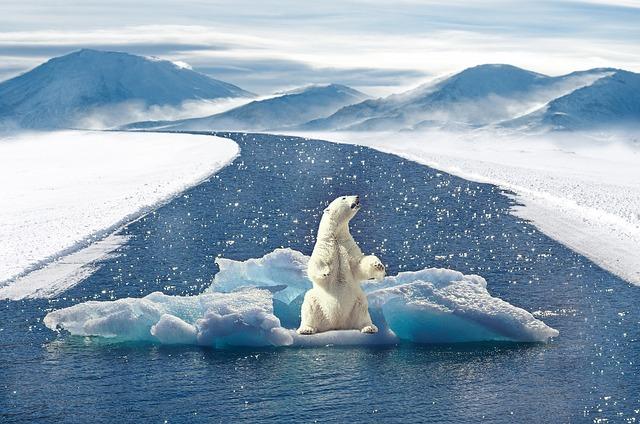 Le rôle des banques face aux risques climatiques